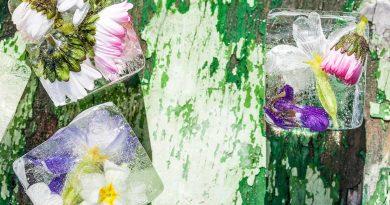 Ледени цветя