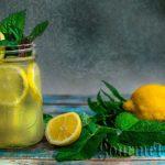 Лимонада с маточина и мента