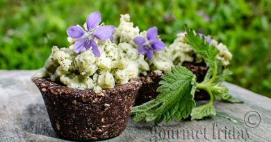 chocolate cakes with nettle topping