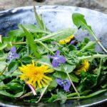 Дива салата със свежи съставки от двора