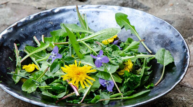 Wild salad with fresh ingredients from the yard