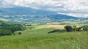 Val dOrcia (2)