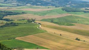 Val dOrcia (4)